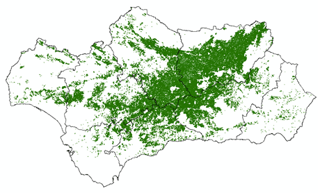vivir como quieras olivos Andalucia 2